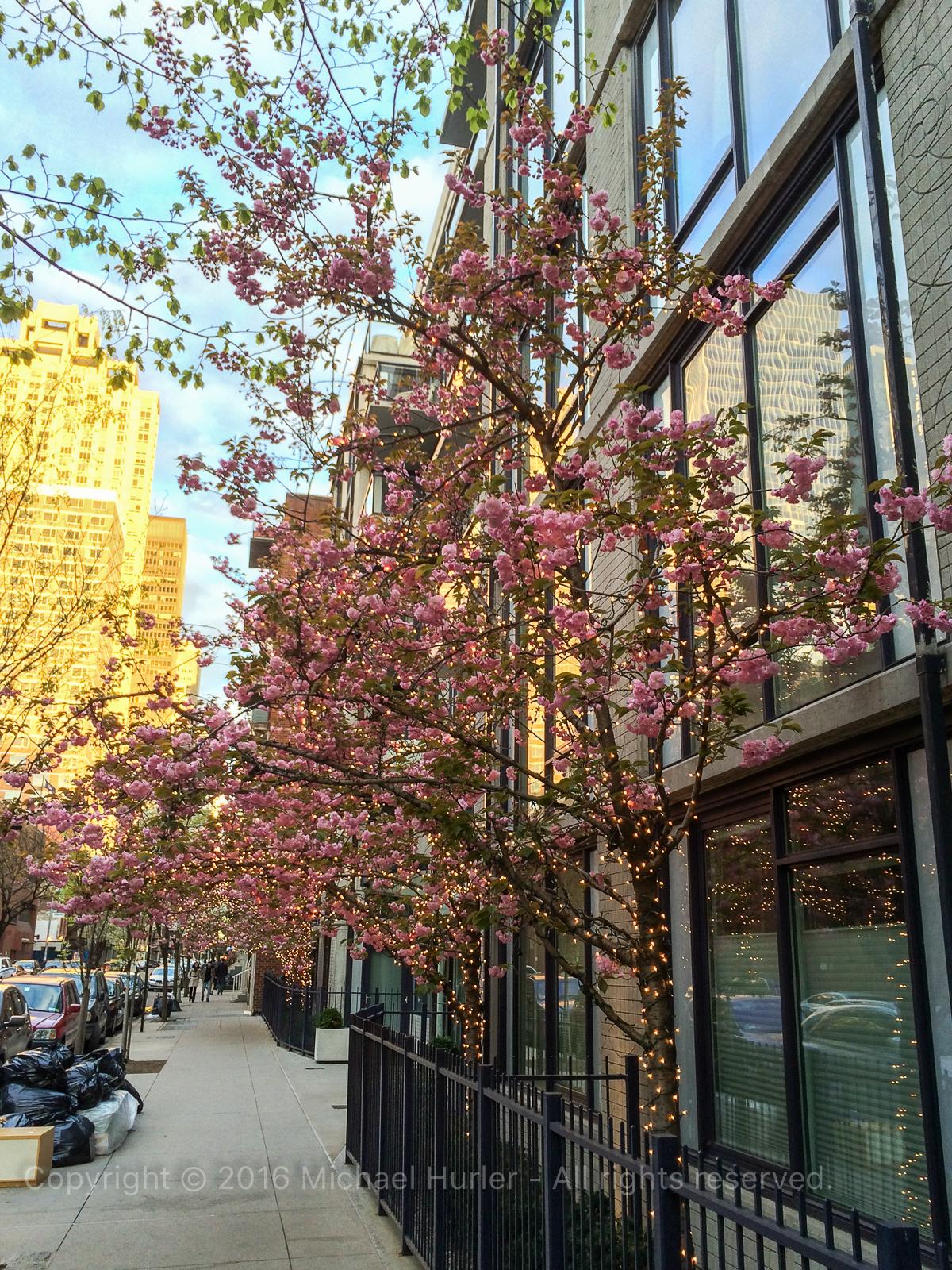 26.04.2015, New York