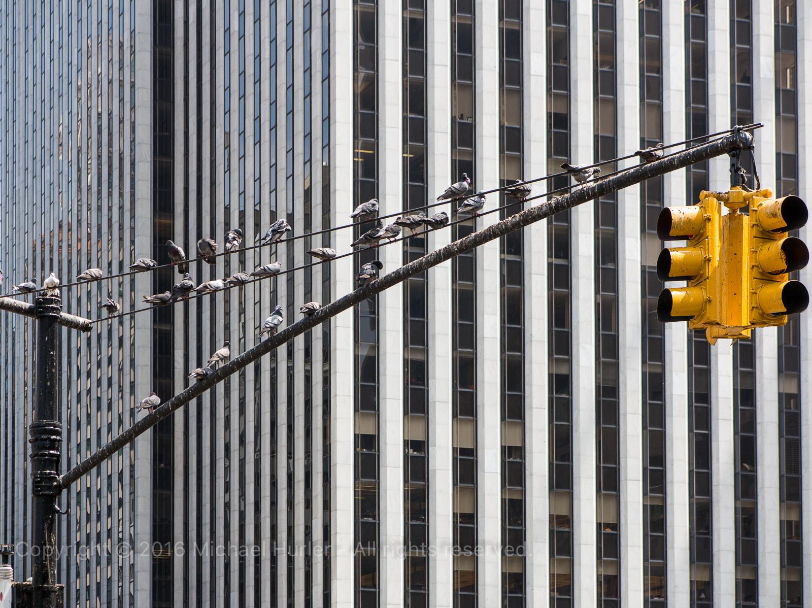 10.05.2015, New York