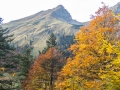 Ausflug ins Naturschutzgebiet der Eng-Alm im Karwendel